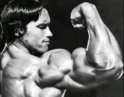 Advanced tips for bigger biceps