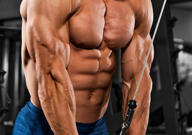 Two Tricep workouts that will make you grow