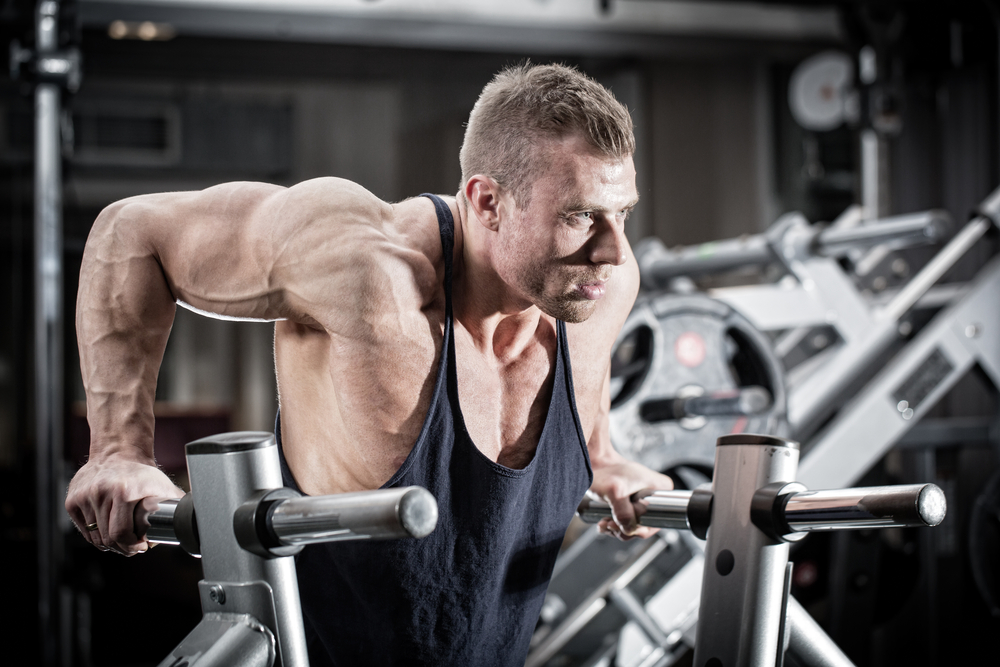 10 Tips to start gaining muscle