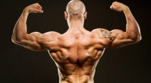 3 Workouts to get that V-shape
